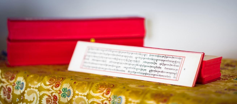 dharma-text